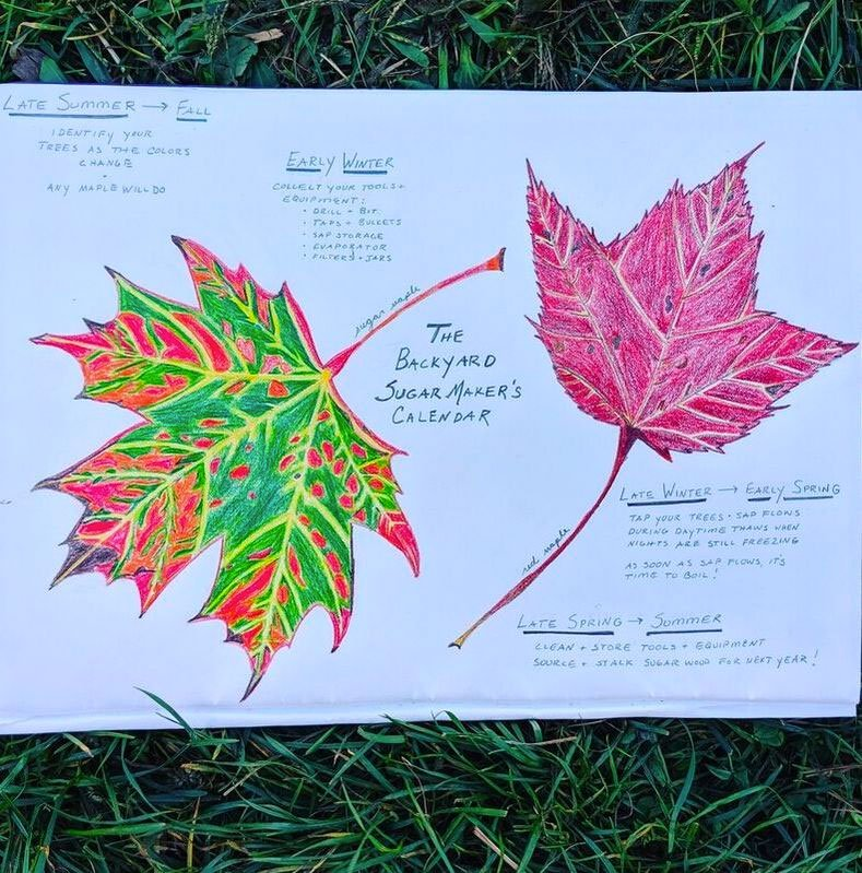 paper with drawn leaves and text on it
